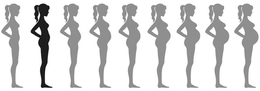 raseduse 2 kuu