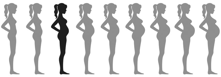 raseduse 3 kuu