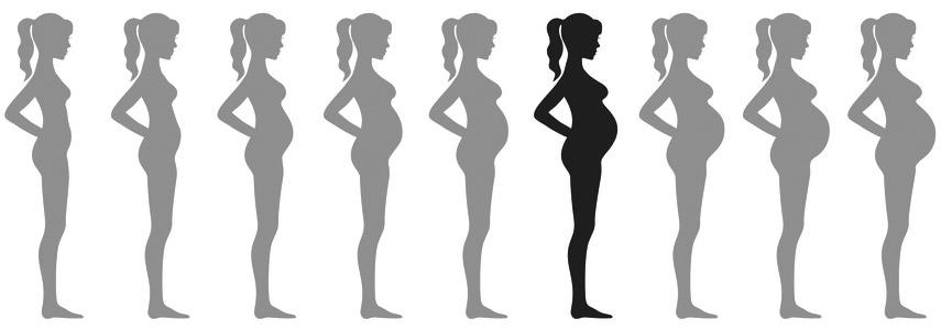 raseduse 6 kuu
