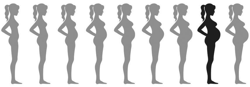 raseduse 8 kuu