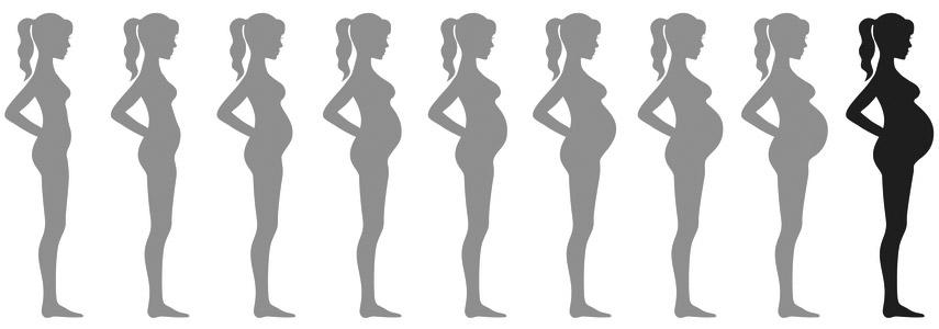 raseduse 9 kuu